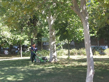 sopralluogo odierno Presidente Foschi al Parco Florida02