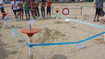 Tartarughe marine scelgono la spiaggia di roseto per for Deposizione uova tartarughe terrestri
