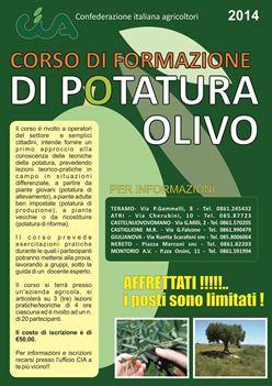 corso potatura olivo 2014