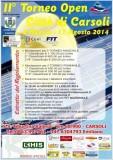 TORNEO open tennis 2014