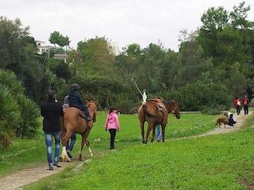 open day a cavallo