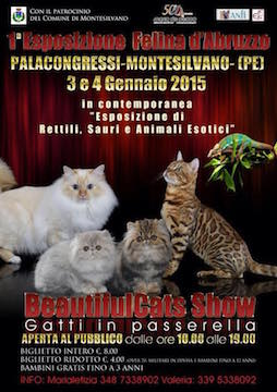 Montesilvano mostra felina