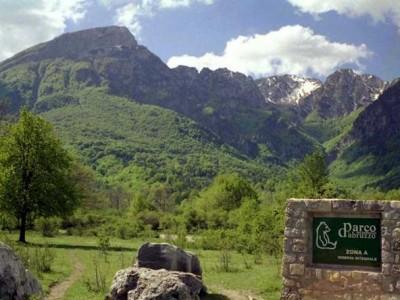 Parco Nazionale d'Abruzzo - Regione Abruzzo Notizie