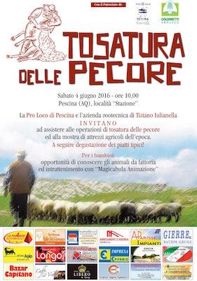 Festa Tosatura delle Pecore 2016