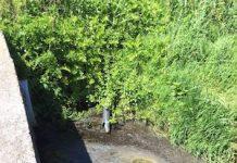 scarico fosso Vallelunga