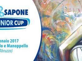 ACQUA & SAPONE JUNIOR VOLLEY CUP