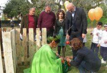 5 cerimonia albero
