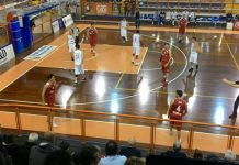 basket Amatori-Campli