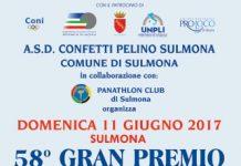 58° GRAN PREMIO CONFETTI PELINO