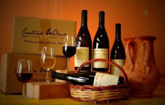 degustazione vini cantina wilma