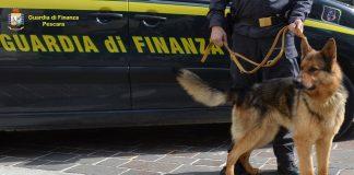 Pescara sequestro marijuana