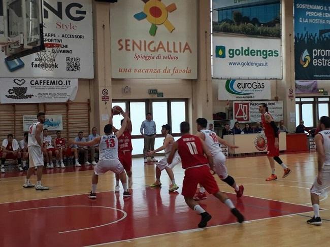 Senigallia Amatori Pescara