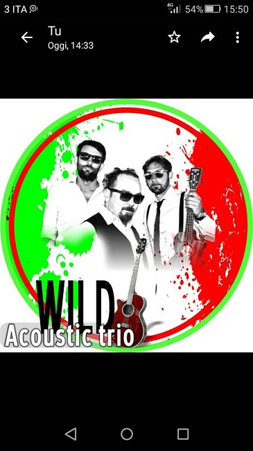 wild acustic trio