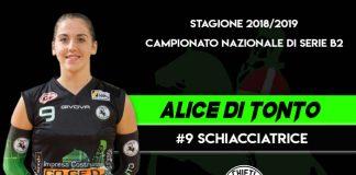 Alice Di Tonto