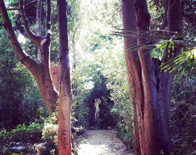 Loreto Aprutino Parco dei Lugustri estate ecologia botanica