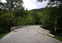 ponte giovenco