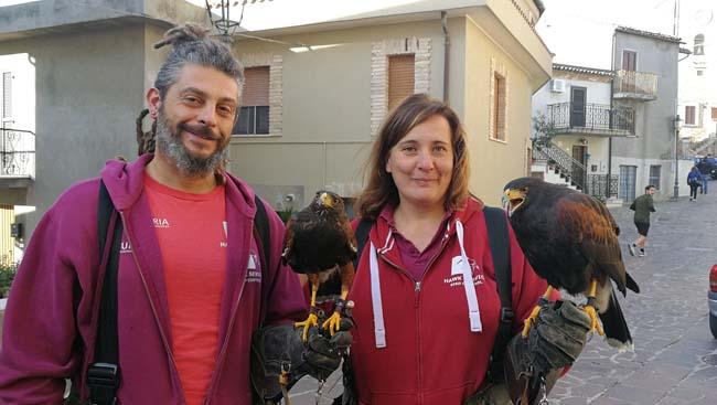 bird control Montesilvano