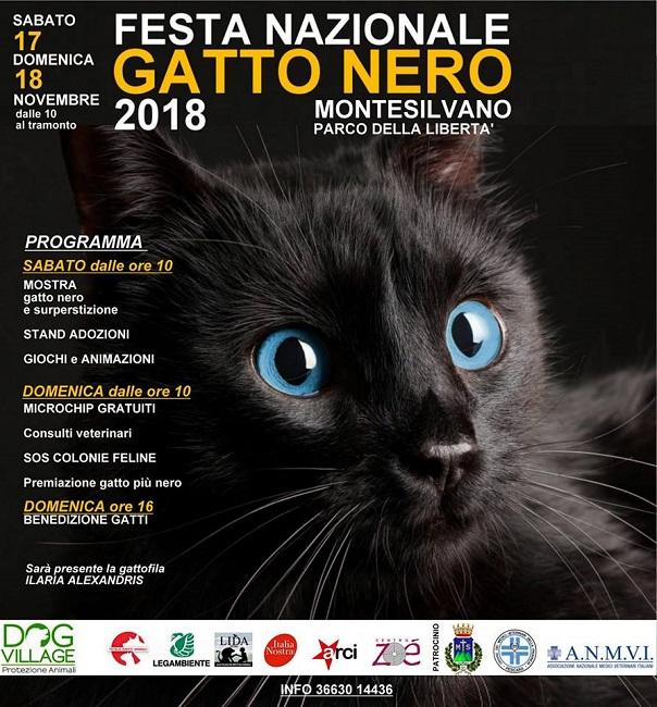 festa gatto nero montesilvano
