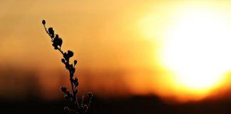 sole meteo in Abruzzo