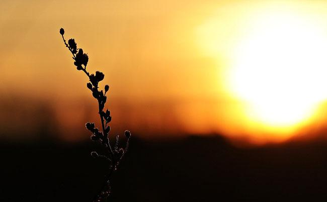 Meteo Abruzzo: da martedì tempo soleggiato e clima primaverile