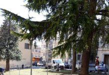 via nicolini Chieti