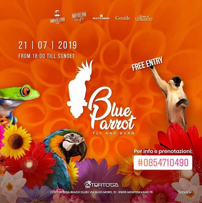 blue parrot 21 luglio 2019