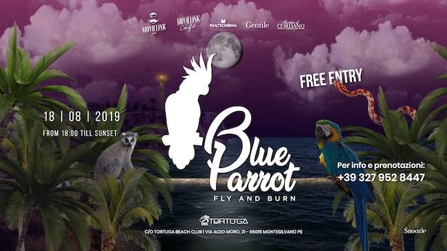 blue parrot 18 agosto 2019