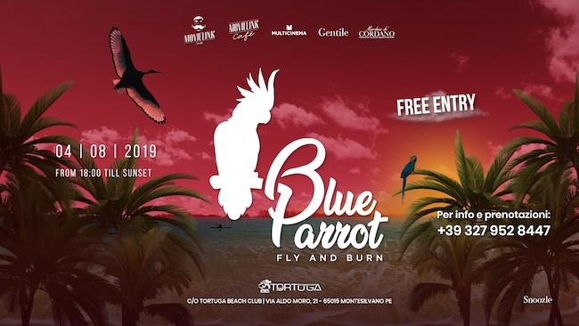 blue parrot 4 agosto 2019