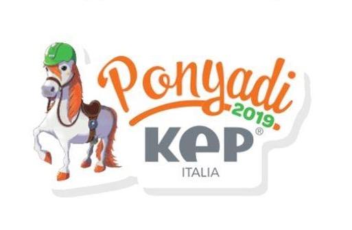 ponyadi Roma 2019