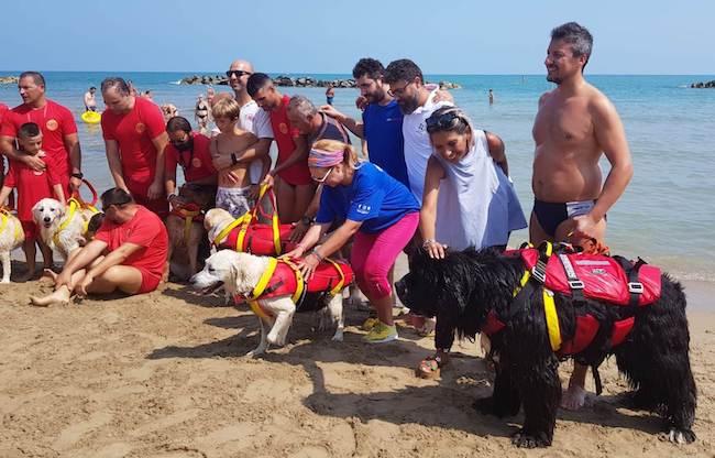 salvataggio mare cani