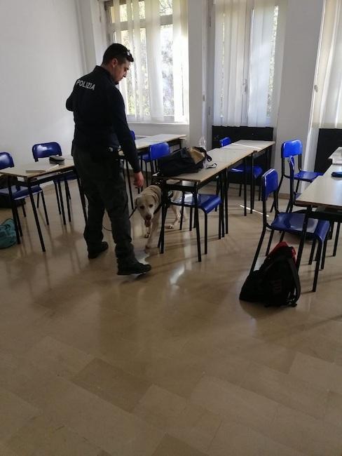polizia controlli scuole cinofili