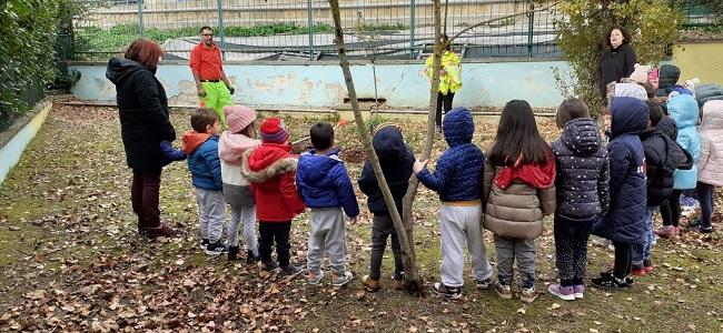 Tempera, le iniziative per la Festa dell'Albero