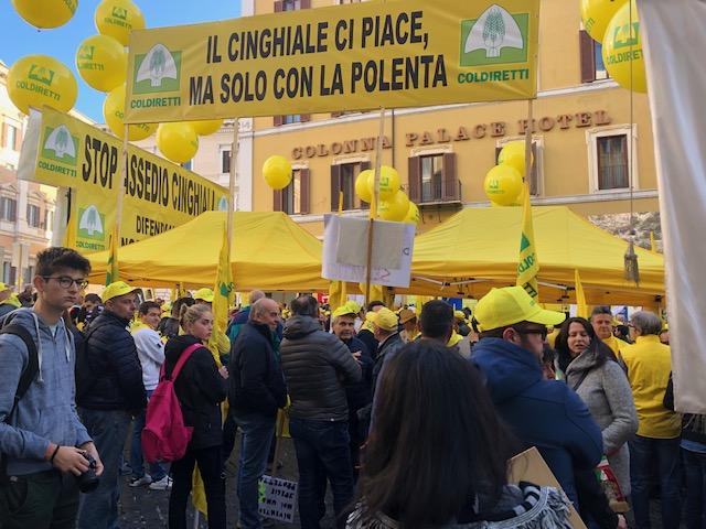 coldiretti roma 7 novembre 2019