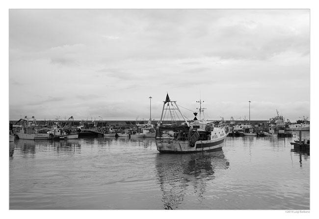 giulianova harbor