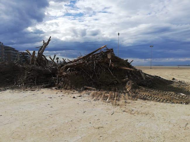 legna accatastata spiaggia pescara