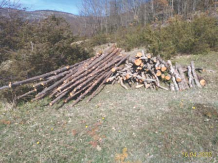legna sequestrata