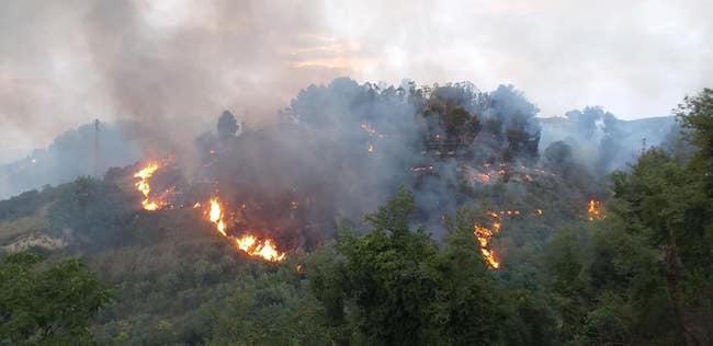 incendio collina san silvestro