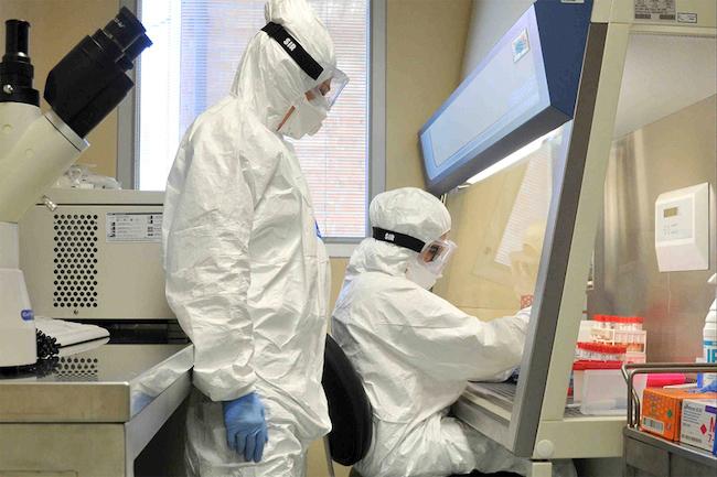attività virologi izsam teramo