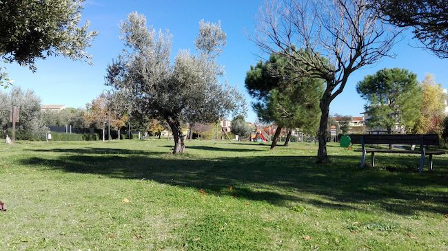parco cerasari Giulianova