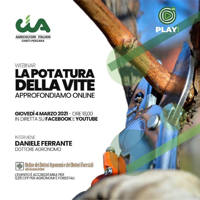 potatura vite locandina