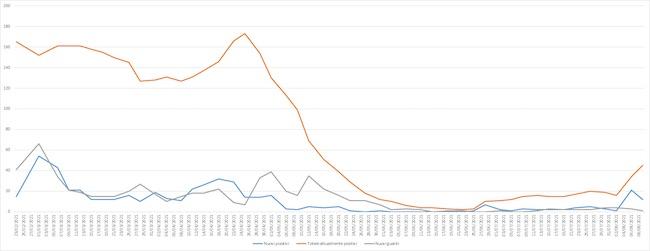 grafico coronavirus giulianova 3-9 agosto 2021
