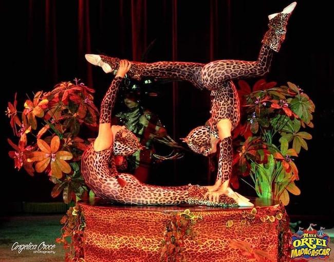 circo madagascar sulmona